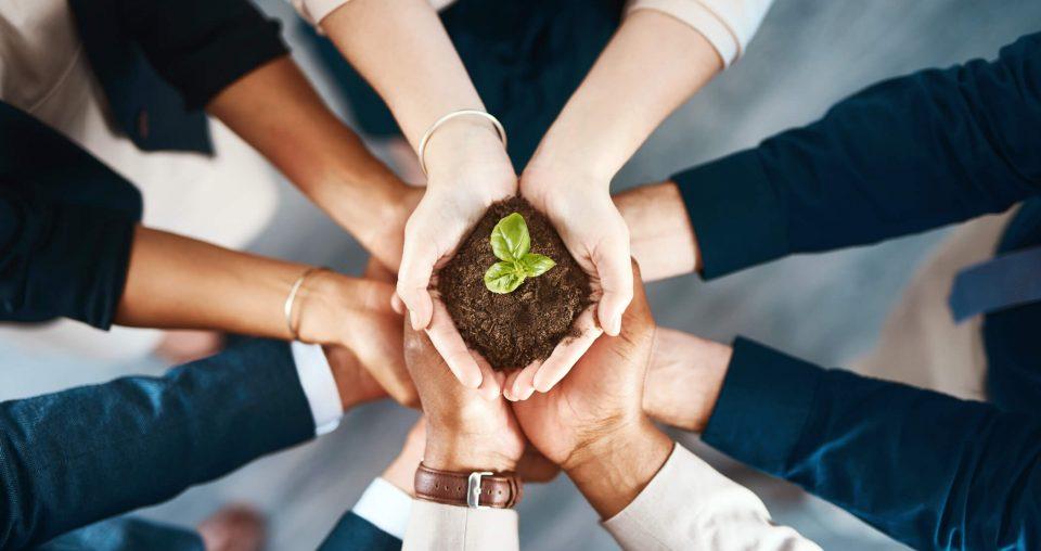 Qual a importância da inovação para crescer e liderar? Entenda agora!